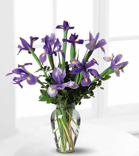 Incredible Iris Bouquet