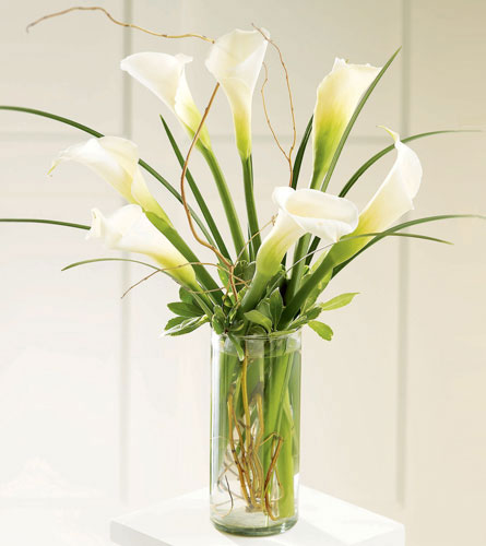 FTD's Simple Sophistication Arrangement